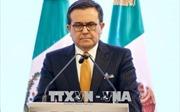 EU và Mexico đạt thỏa thuận sơ bộ về FTA mới