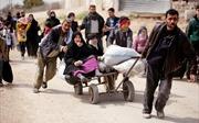 Chùm ảnh hàng chục nghìn dân thường Syria tháo chạy khỏi điểm nóng Đông Ghouta
