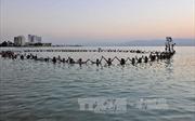 Jordan và giấc mơ 'hồi sinh' biển Chết