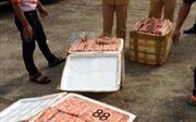 Bắt quả tang vụ vận chuyển 200 kg gà hôi thối tiêu thụ tại Hà Nội