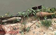 Phát hiện 2 quả đạn cối nằm ven bờ sông Sài Gòn