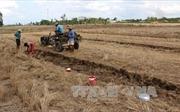 Báo động tình trạng khai thác và bán đất mặt ruộng ở Bạc Liêu