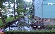 Ô nhiễm, sụt lún đe dọa cư dân khu tái định cư Đồng Tàu, Hà Nội