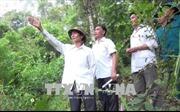 Thu dịch vụ môi trường rừng tăng gần 70%