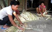 Giúp người dân miền núi giảm nghèo