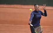 Sharapova và Muguruza đón đợi, Serena Williams tiến sâu được tới đâu?