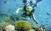 Từ 1/6 sẽ áp dụng thông tư quy định môn lặn biển thể thao giải trí
