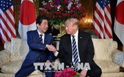 Thước đo giá trị liên minh Mỹ - Nhật