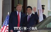 Thủ tướng Nhật Bản và sứ mệnh tìm kiếm sự đảm bảo