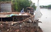 Sạt lở đất ven sông làm sụp 6 nhà dân ở Cà Mau