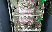 Chuột cắn nát hơn 17.000 USD trong máy ATM