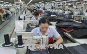 Tạo đà để xuất khẩu của Việt Nam tăng trưởng mạnh hơn