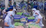 Áp thuế thương mại Mỹ - Trung: Doanh nghiệp Việt phải giữ thế chủ động