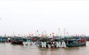 Bộ trưởng Nguyễn Xuân Cường kiểm tra công tác phòng, chống bão số 4 tại Nam Định