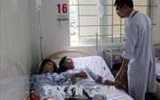 Ăn nấm lạ, 4 người trong một gia đình nhập viện