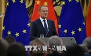 EU hối thúc Mỹ, Trung Quốc, Nga ngăn chặn 'xung đột và hỗn loạn' thương mại