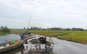 Đồng bằng sông Cửu Long sẽ đón lũ đầu mùa từ ngày 13/8