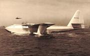 Chiếc máy bay gỗ chỉ cất cánh một lần rồi 'đắp chiếu'