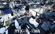 Việt Nam - Ấn Độ đẩy mạnh hợp tác trong ngành dệt may