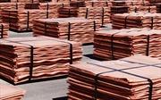 Giá đồng giảm mạnh – Tín hiệu đáng lo ngại cho kinh tế toàn cầu